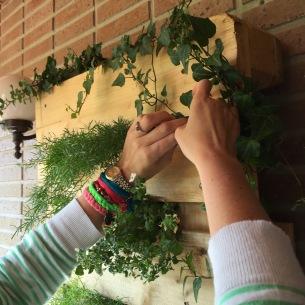 colocamos las plantas con cuidado
