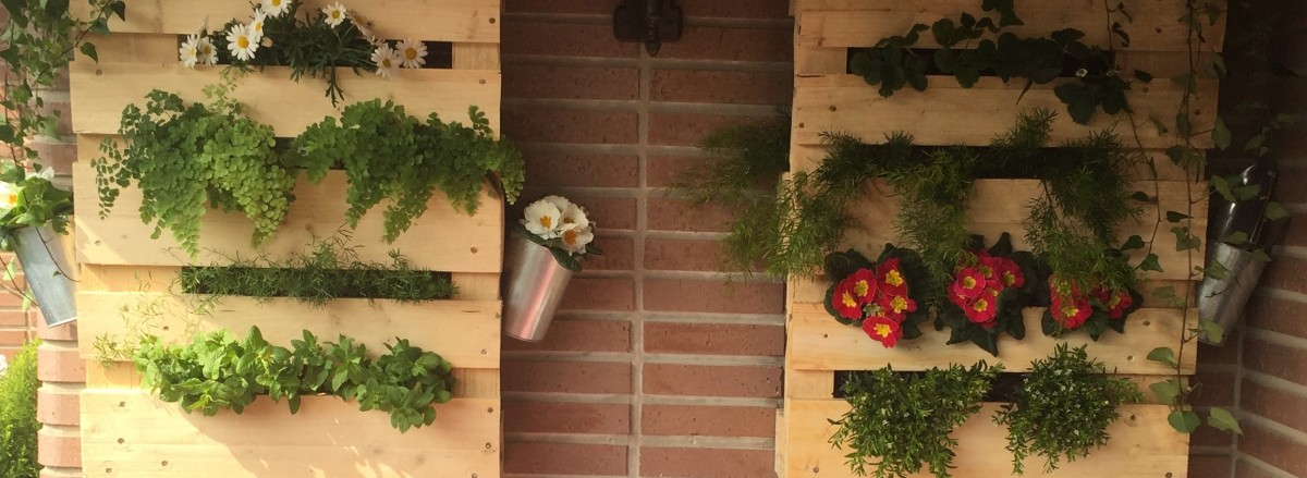 Jard n vertical con palets let s do it yourself - Jardin vertical con palets ...