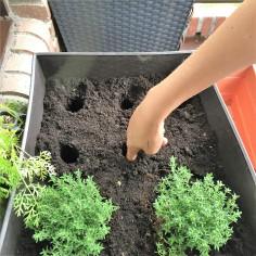 12-huerto-de-otono-para-los-plantones-hacemos-el-agujero-con-los-dedos