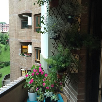 jardín vertical con celosía