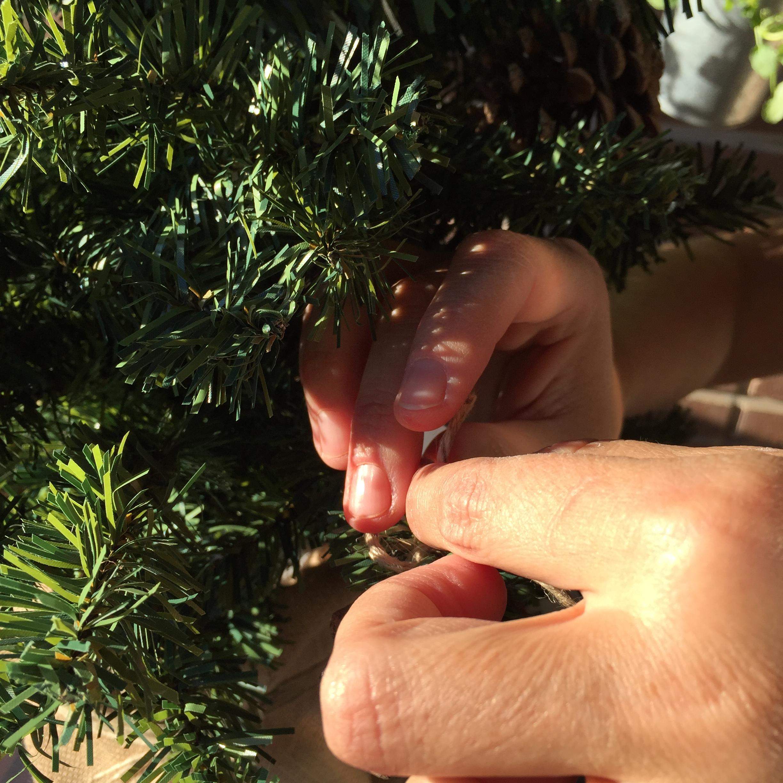 atamos las poñas al árbol