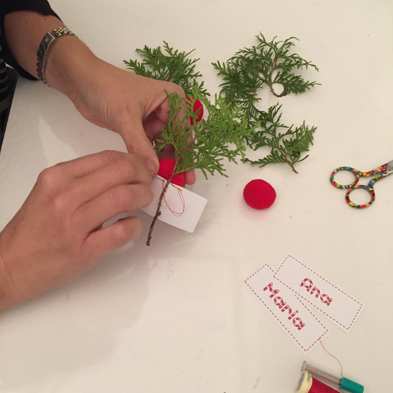 cosemos el nombre al tallo de la rama