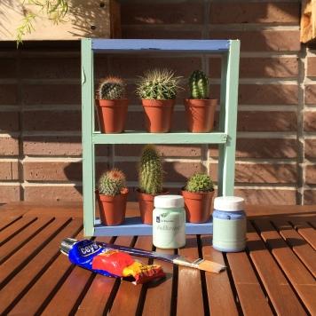 13-diy_mini_estanteria_madera_cactus_colocamos_cactus