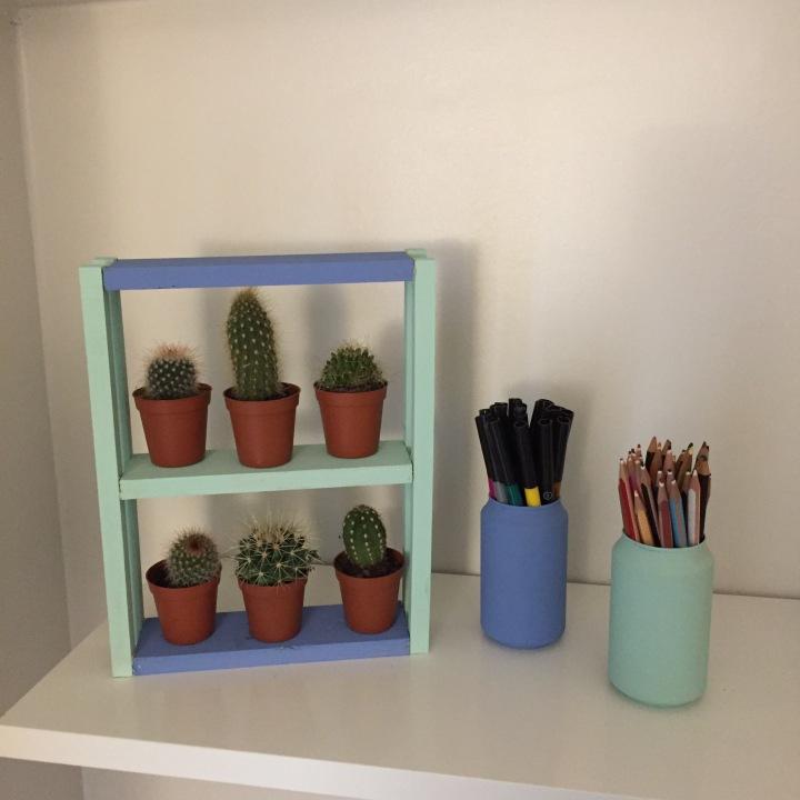 14-diy_mini_estanteria_madera_cactus_resultado